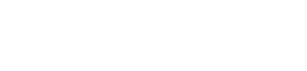 Gestão de frota online Velocity